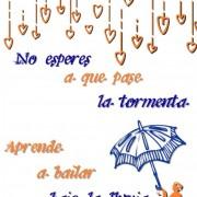 No esperes a que pase la tormenta, aprende a bailar bajo la lluvia.
